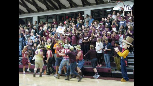 Fans of the Cobden High School volleyball team cheered on their team in the Nov. 1 sectional championship match, which was played in front of a packed house.