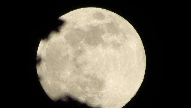 """The """"super"""" """"Full Flower Moon,"""" as it appeared in the night sky over Union County on Wednesday, May 6. The space.com website shared that """"NASA says this will be the last supermoon of 2020 after a string of larger-than-usual moons early in the year, in February, March and April."""" Guess that means the rest of the full moons for 2020 will just be dull and boring."""