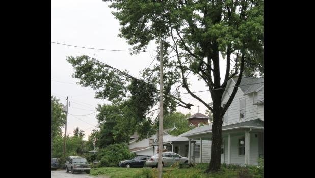 As you might guess, the dangling tree limb really wasn't supposed to be where it was...the tree limb apparently broke during last Friday's stormy weather.