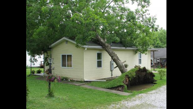 A tree fell against a house along Mountain Glen Road in Anna.