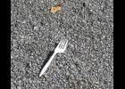 Your intrepid writer and photographer came to a fork in the road while on a walk last Sunday afternoon. What happened next? Please read this...